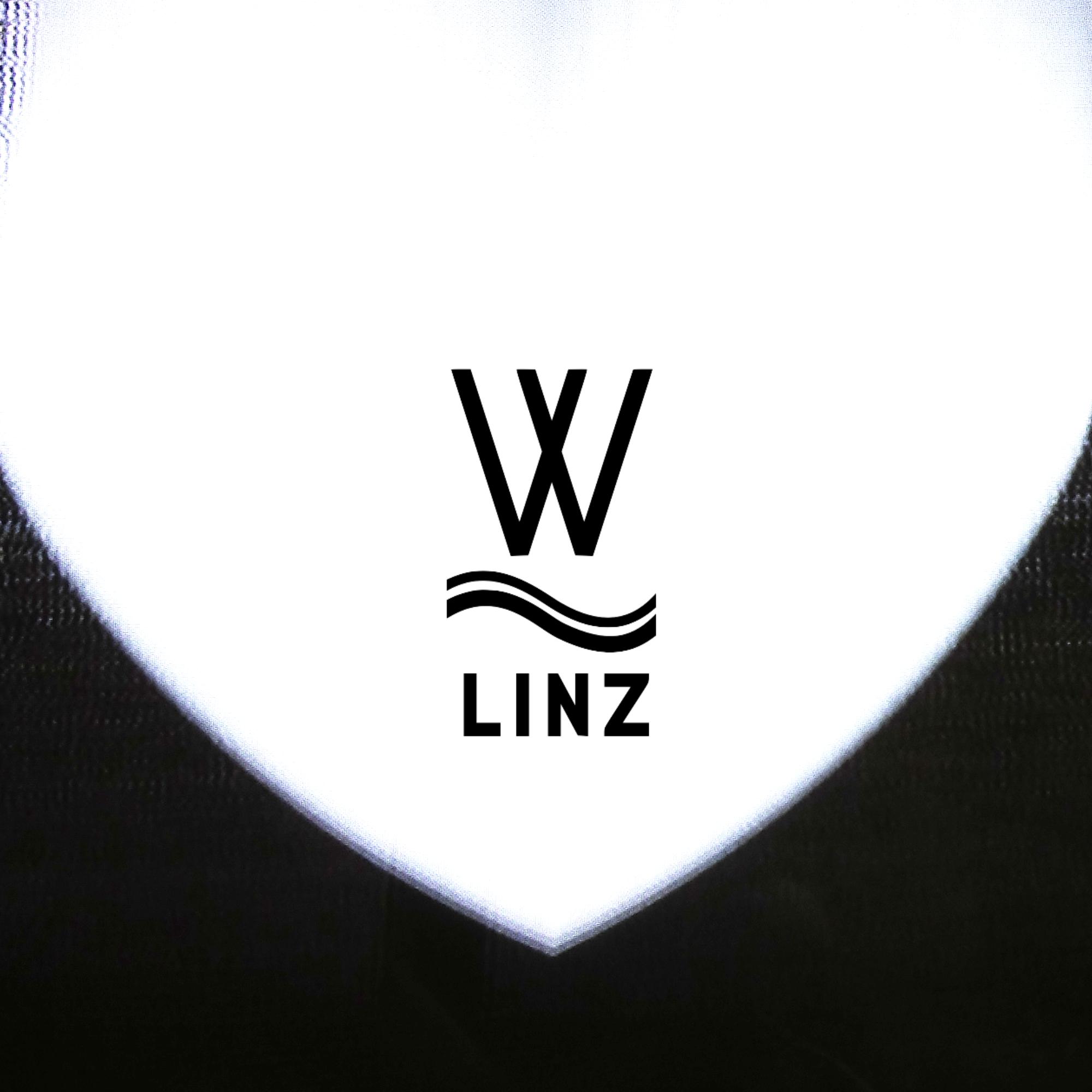 album cover Welle Linz - Dreck
